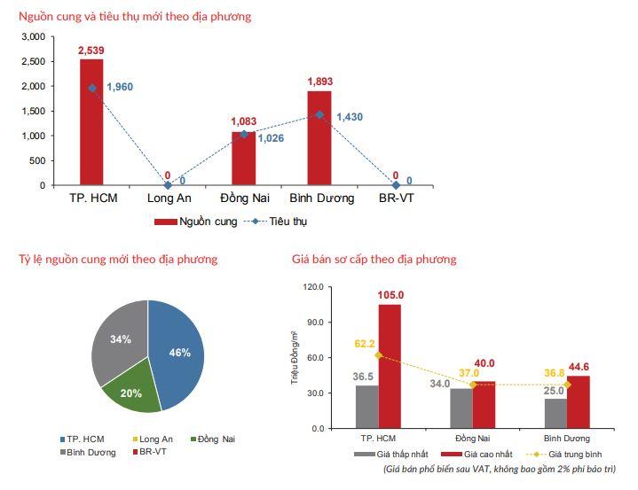 Nguồn cung mới vùng phụ cận TP HCM dẫn đầu thị trường bất động sản - Ảnh 3.