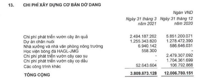 HAGL giảm gần 9.400 tỷ đồng nợ vay sau khi 'dứt áo' với HAGL Agrico - Ảnh 4.