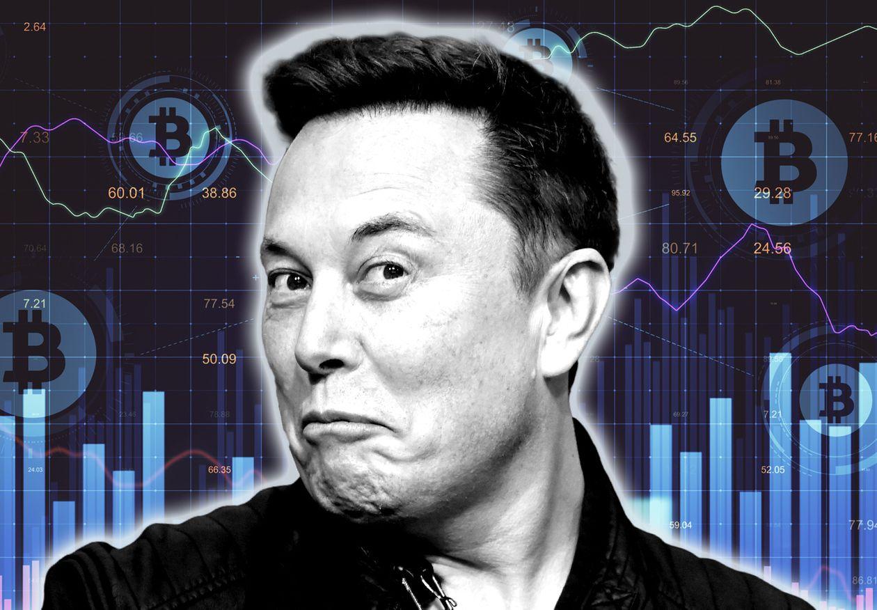 Elon Musk ngụ ý Tesla đã bán sạch bitcoin - Ảnh 1.