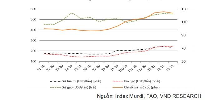 Giá lương thực toàn cầu tăng cao, gạo và đường Việt Nam được hưởng lợi - Ảnh 4.