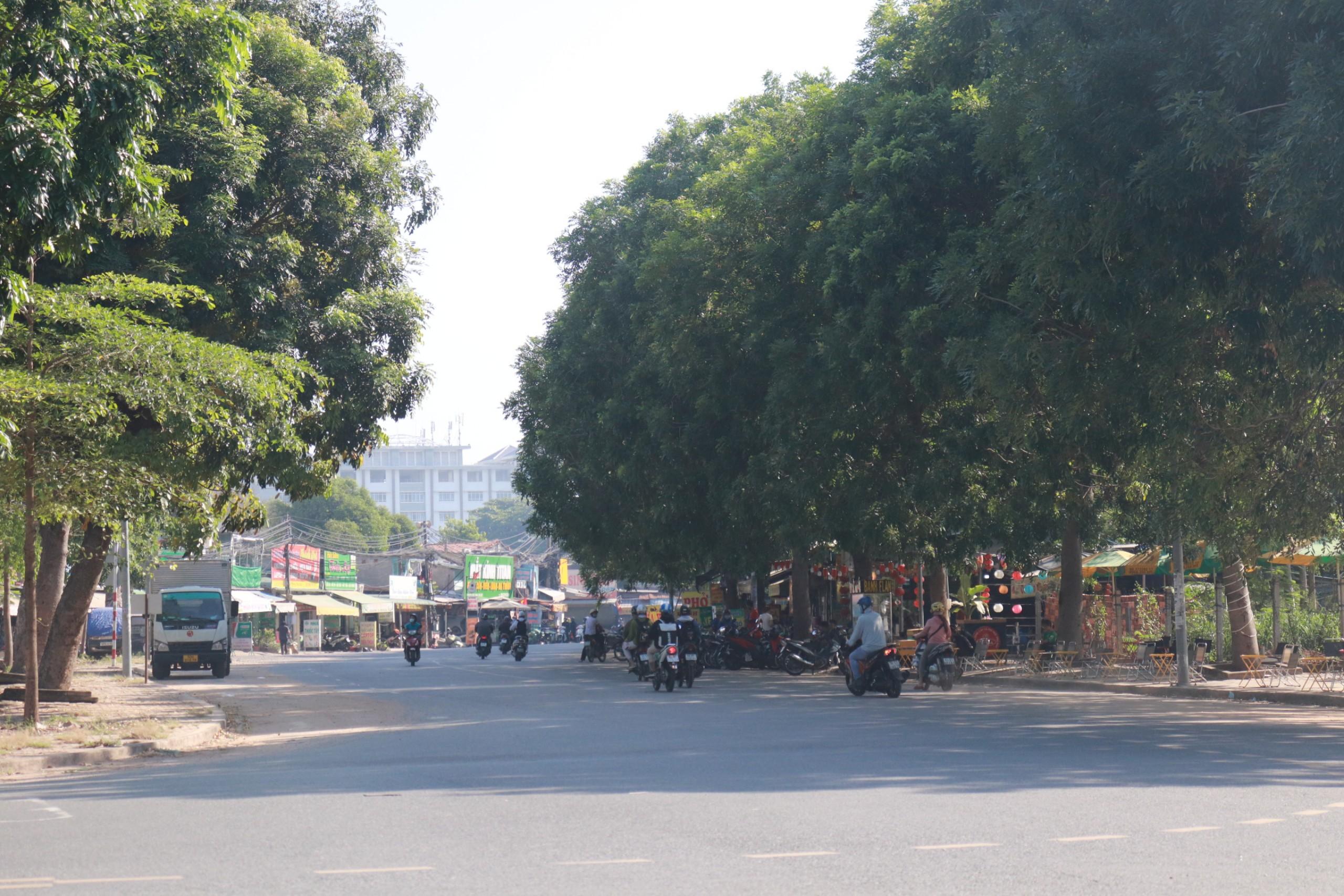Đất dính quy hoạch ở phường Linh Trung, TP Thủ Đức, TP HCM - Ảnh 4.