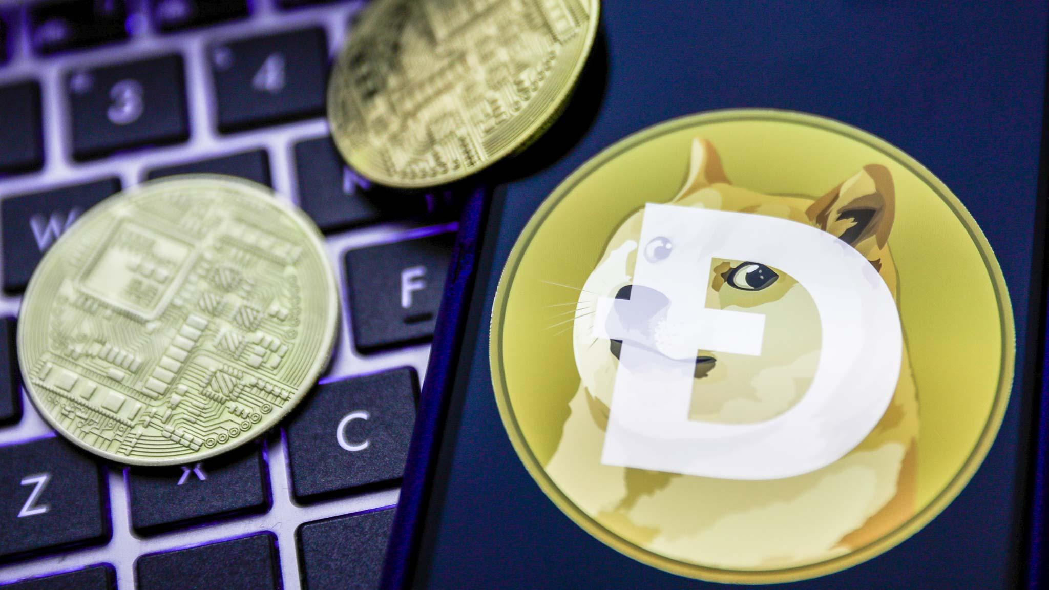 5 điều cần biết trước khi mua Dogecoin để tránh rủi ro - Ảnh 1.