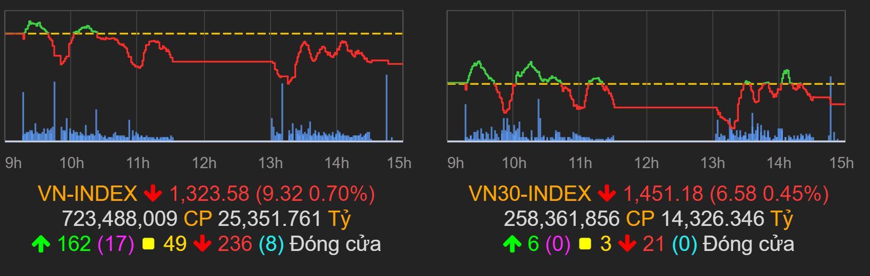 Thị trường chứng khoán (10/6): Thiếu vắng dòng dẫn dắt, VN-Index lên xuống như tàu lượn, cổ phiếu thủy sản đồng loạt tăng trần - Ảnh 1.
