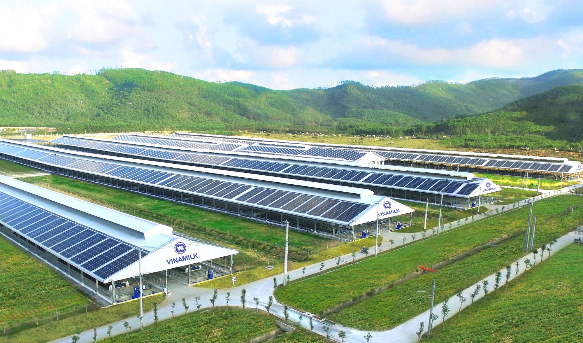 Tổ hợp trang trại bò sữa Vinamilk tại Lào sẽ hoạt động vào quý I/2022 - Ảnh 4.