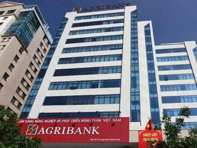 Agribank báo lãi giảm trong năm 2020, công ty con chìm trong thua lỗ - Ảnh 1.