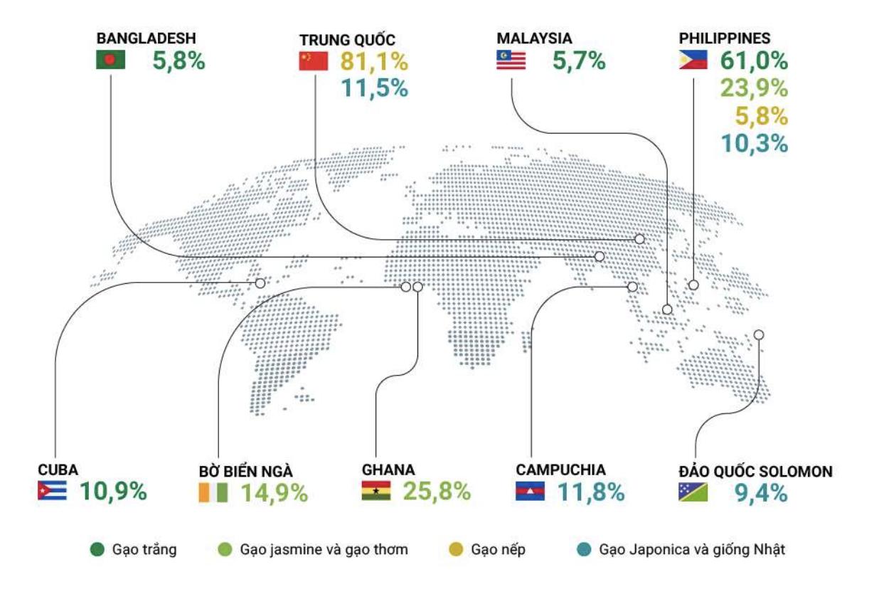 [Báo cáo] Thị trường gạo tháng 5/2021: Chịu cạnh tranh lớn từ Ấn Độ, Thái Lan? - Ảnh 1.