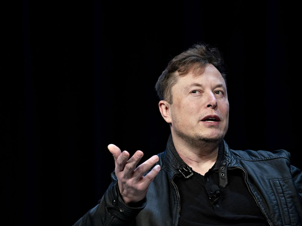 Giá một cổ phiếu Hàn Quốc tăng 10% sau dòng tweet của Elon Musk về 'Baby Shark' - Ảnh 1.