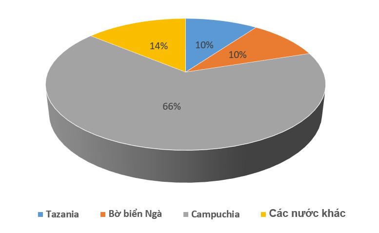 Giải mã những bí ẩn đằng sau việc nhập khẩu điều từ Campuchia tăng đột biến 550% - Ảnh 1.