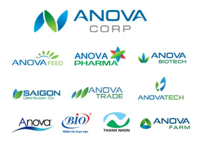 Anova Corp sẽ niêm yết trên HOSE vào cuối năm nay - Ảnh 2.