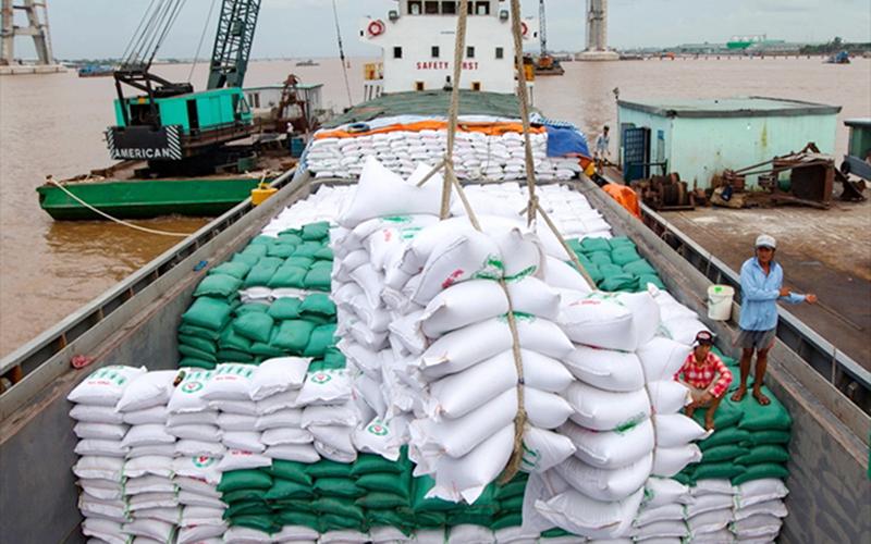 Lo gạo Ấn Độ làm hại thương hiệu gạo Việt, có nên ra quy định hạn chế nhập khẩu? - Ảnh 1.