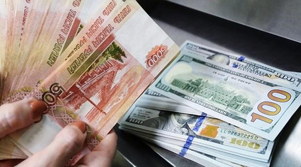 Nga tiến tới không dự trữ đồng USD - Ảnh 1.