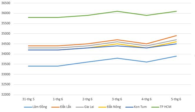 Giá cà phê hôm nay 6/6: Thị trường tăng nhẹ trong tuần qua - Ảnh 1.