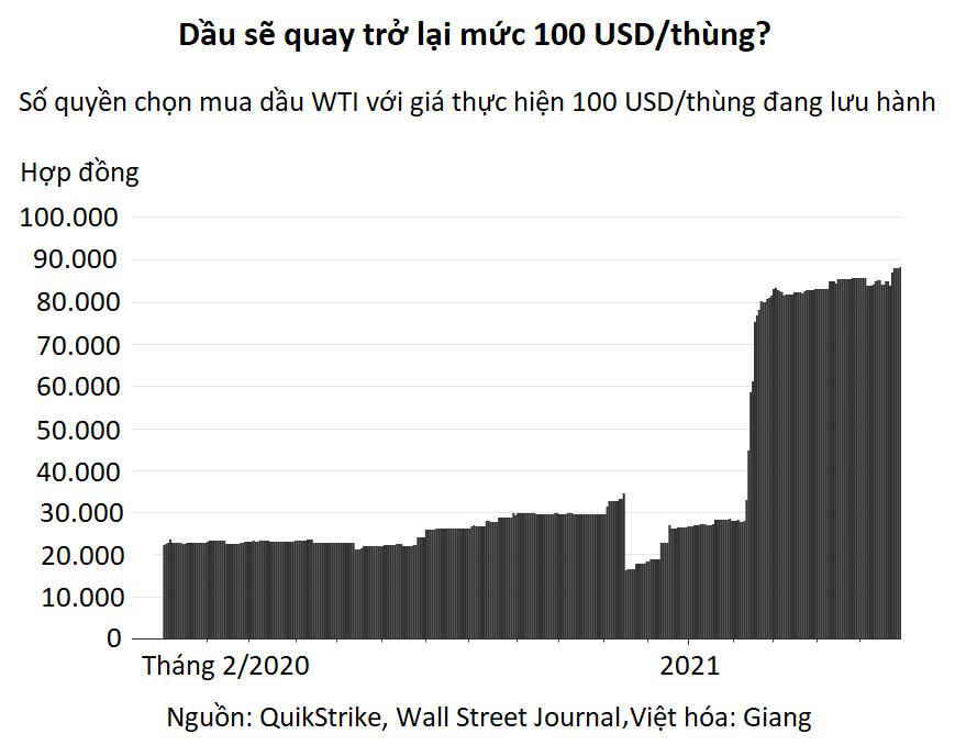 Nhà đầu tư quyền chọn đang cược rằng giá dầu sẽ lên 100 USD/thùng - Ảnh 1.