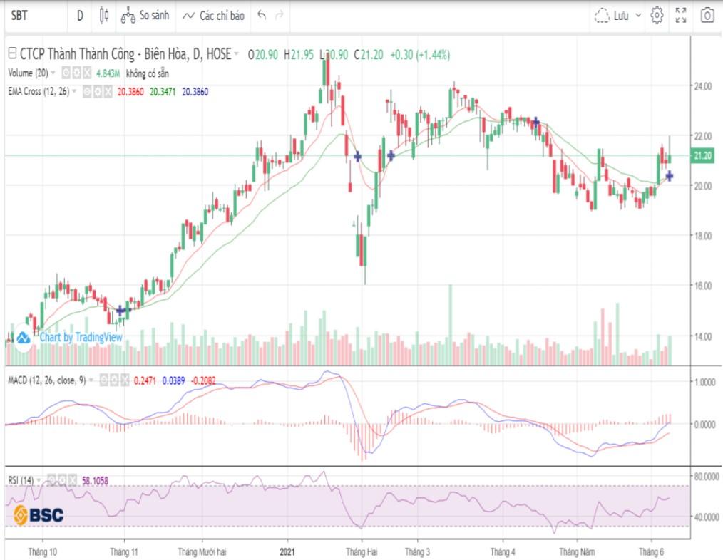 Cổ phiếu tâm điểm ngày 9/6: VHM, SBT, HMC - Ảnh 2.