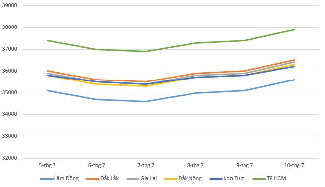 Giá cà phê hôm nay 11/7: Tăng từ giữa tuần, giá thu mua gần chạm ngưỡng 38.000 đồng/kg - Ảnh 1.