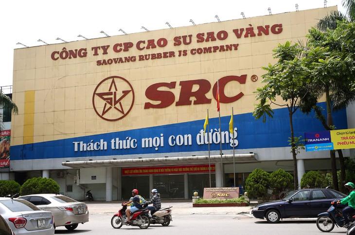 Sau thương vụ thâu tóm SRC, công ty con của Hoành Sơn Group sắp niêm yết trên sàn UPCoM - Ảnh 4.