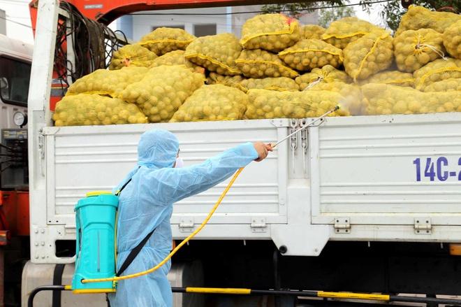 Dịch COVID-19: Gấp rút tìm phương án điều phối nông sản, thực phẩm tại khu vực phía Nam - Ảnh 2.