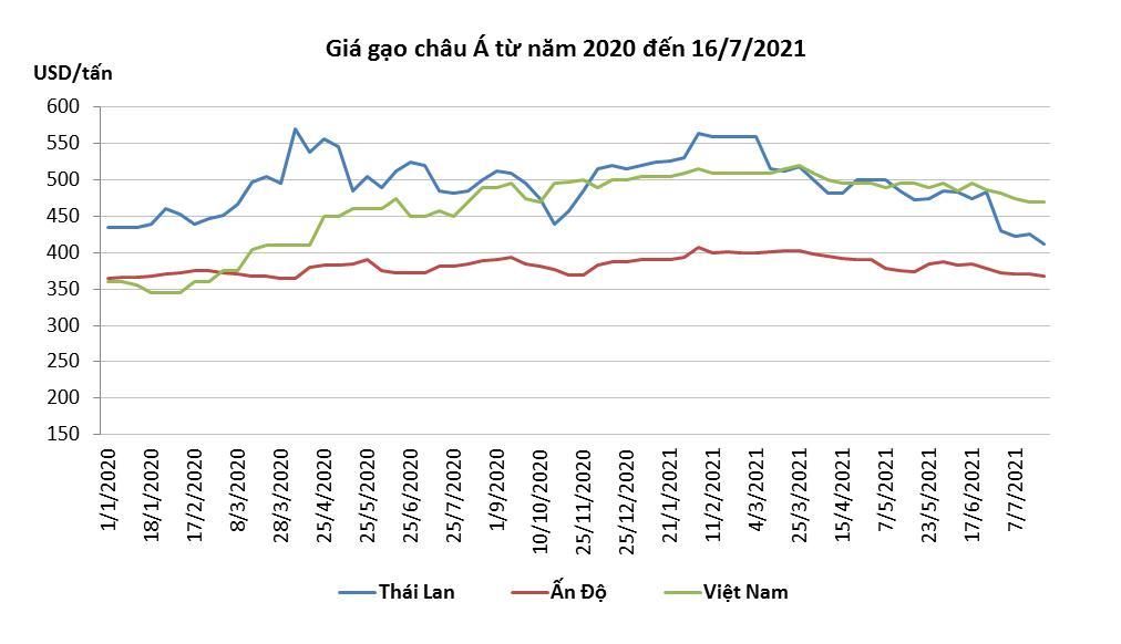 Xuất khẩu gạo chuyển dịch theo hướng giảm lượng, tăng chất - Ảnh 2.