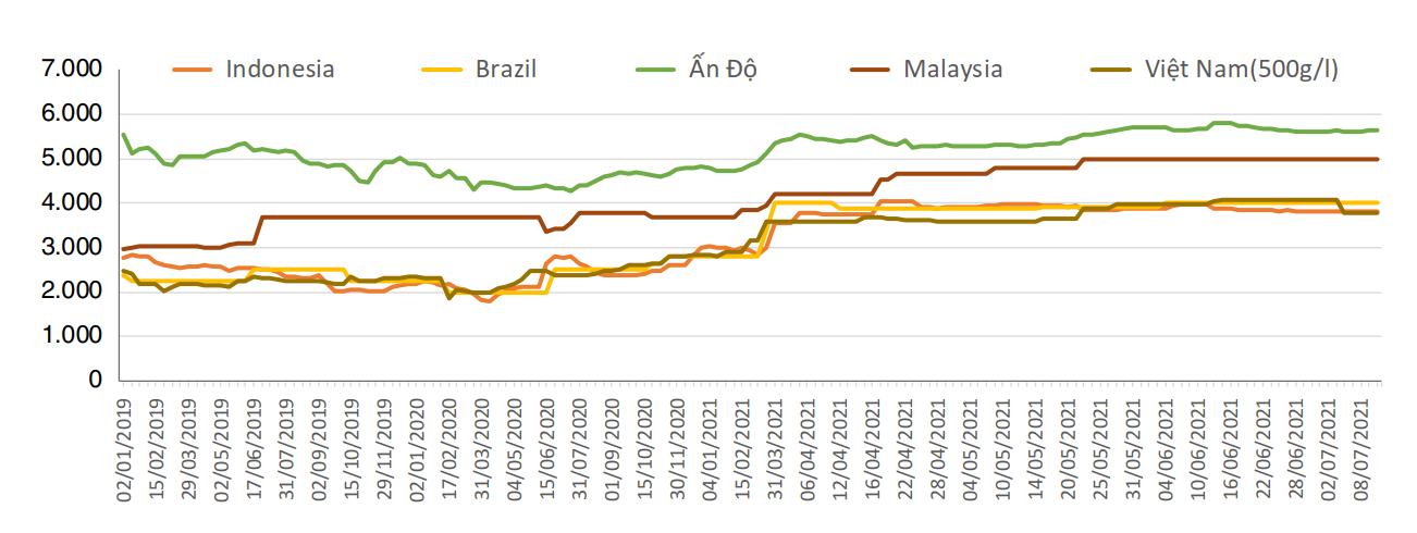[Báo cáo] Thị trường hồ tiêu quý II/2021: Giá hạt tiêu dự kiến ổn định trong ngắn hạn - Ảnh 1.