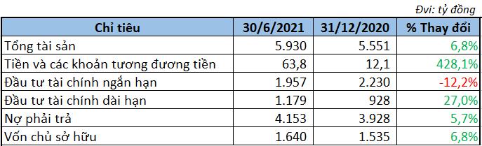 MIC báo lãi tăng 44%, nâng mạnh nắm giữ tiền mặt 6 tháng đầu năm - Ảnh 3.