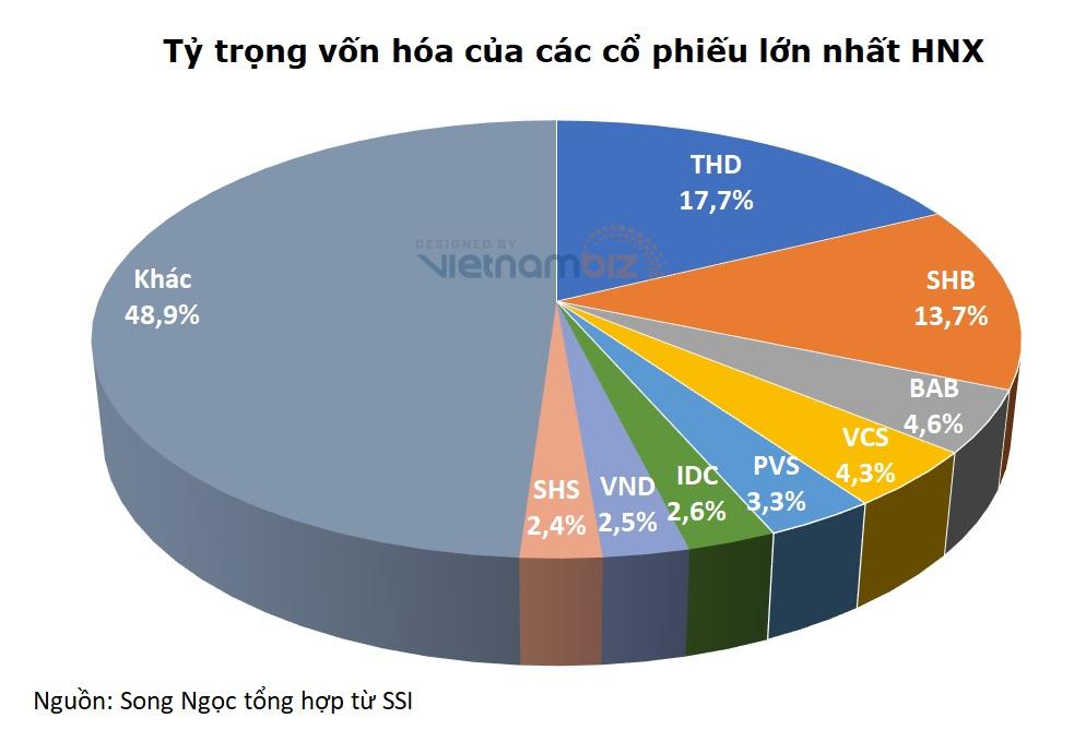 THD lần đầu giảm sau 15 phiên tăng liên tục, vốn hóa vẫn trên 3 tỷ USD - Ảnh 2.