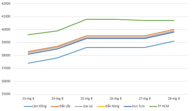 Giá cà phê hôm nay 29/8: Giá thu mua tăng mạnh trong tuần qua - Ảnh 1.