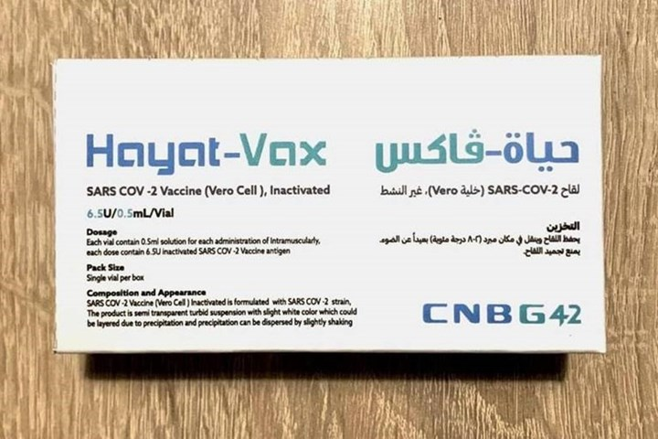 Việt Nam phê duyệt vắc xin Hayat-Vax - Ảnh 1.