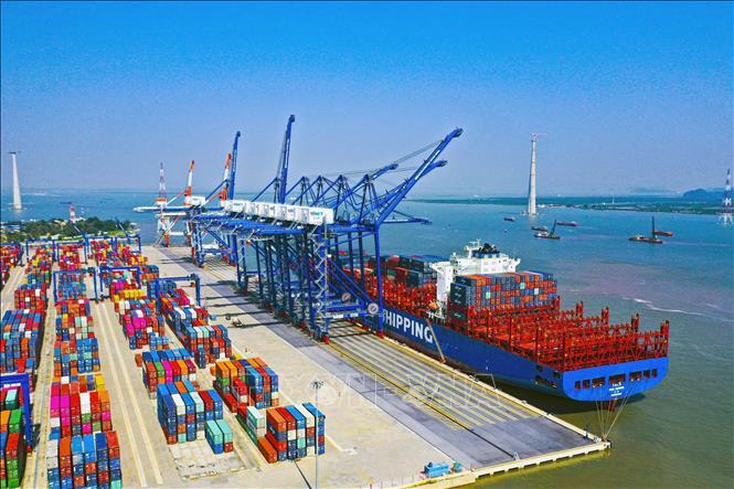 Hãng tàu phải công khai cước, phụ thu vận tải container tại Việt Nam - Ảnh 1.