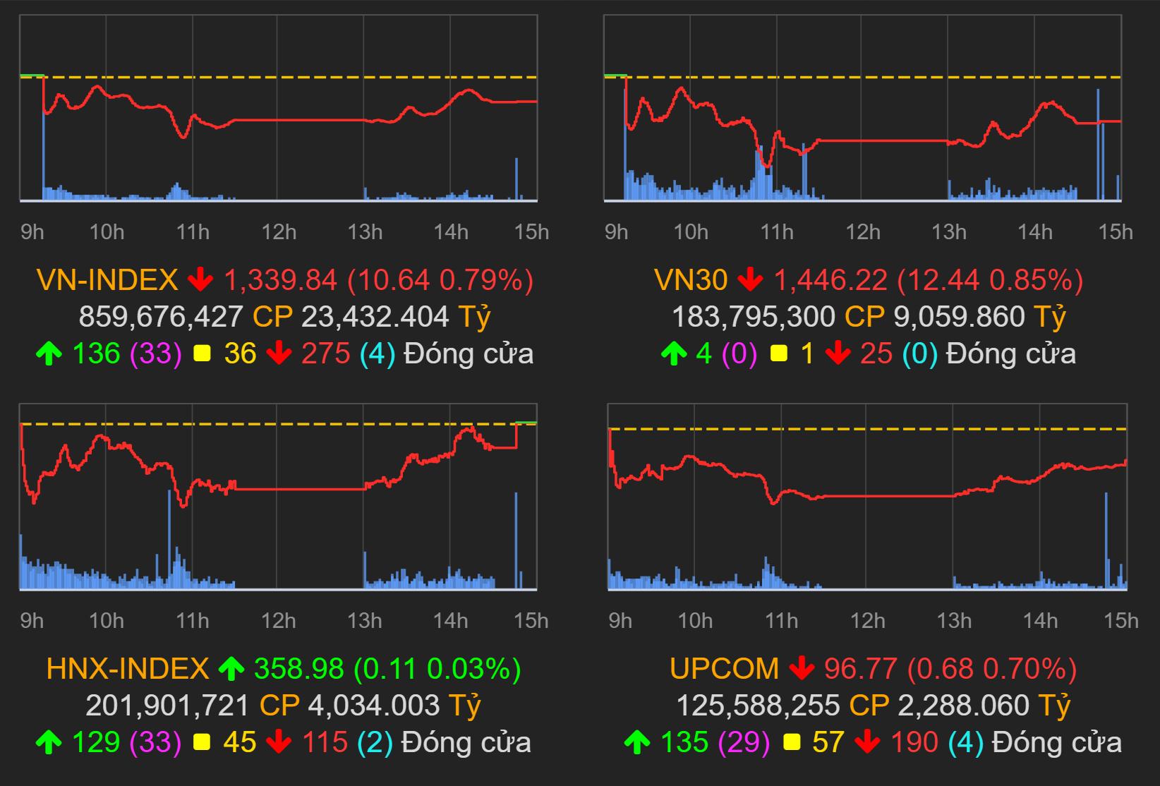 Thị trường chứng khoán (21/9): Nhóm vốn hóa vừa và nhỏ hồi phục, VN-Index chỉ còn giảm gần 11 điểm - Ảnh 1.