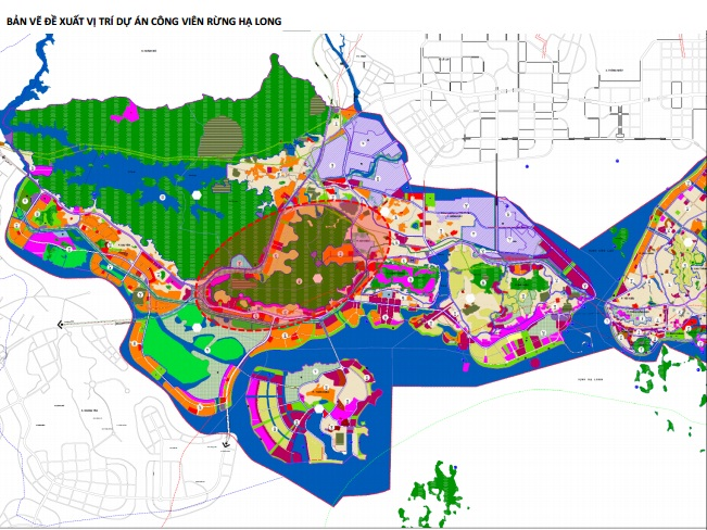 Vingroup muốn làm công viên rừng rộng 650 ha tại TP Hạ Long - Ảnh 1.