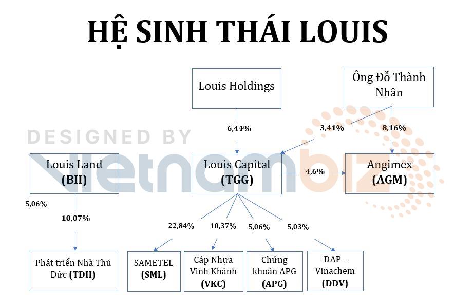 Hệ lụy sau cơn cuồng cổ phiếu 'họ Louis': Cổ đông lớn bỏ tiền đỡ giá, NĐT hò nhau ngừng xả giá sàn - Ảnh 1.