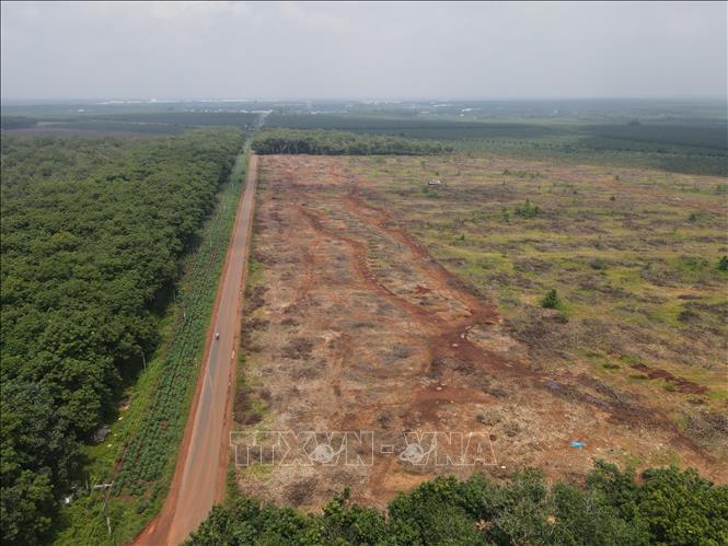 Dự án sân bay Long Thành đã giải phóng mặt được 50% - Ảnh 1.