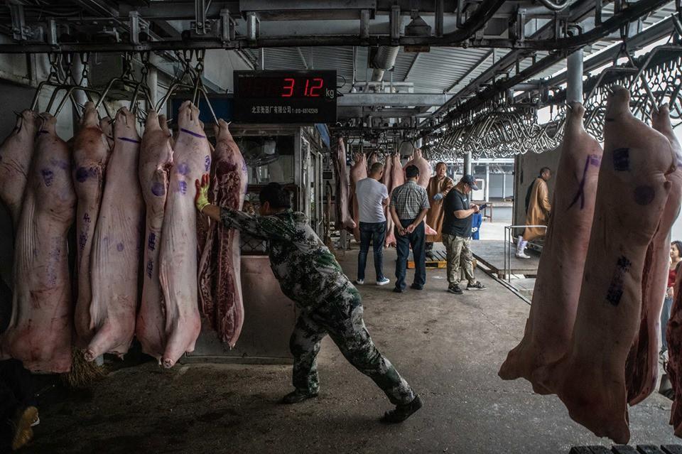 Khám phá kho dự trữ thịt lợn chiến lược của Trung Quốc - Ảnh 1.