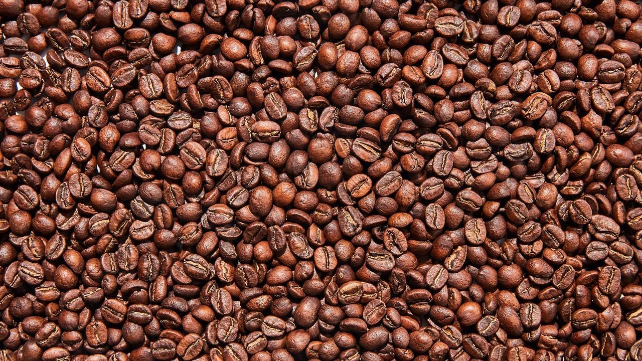 Basically-Coffee-0219-03 (1)