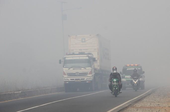 ASEAN tìm giải pháp đối phó khói mù - Ảnh 1.