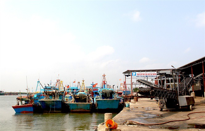 Tắc đường sang Trung Quốc, thủy sản rớt giá - Ảnh 2.
