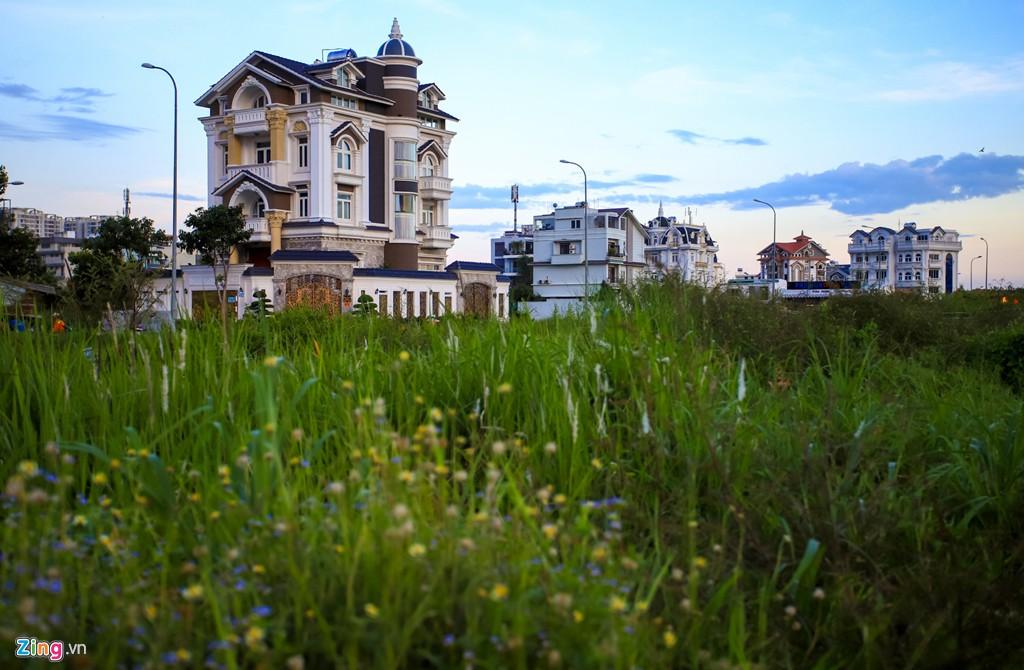 Biệt thự đắt đỏ và khu nhà giàu mới đang hình thành tại quận 2 - Ảnh 10.