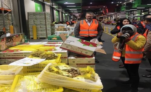 Gỡ 'nút thắt' xuất khẩu trái cây vào Australia - Ảnh 2.