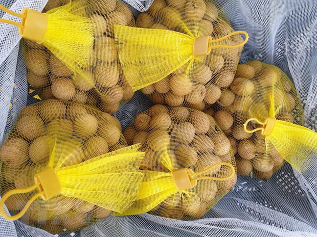 Trái cây Việt vào thị trường Australia: Cửa đã mở nhưng không dễ đi... - Ảnh 2.