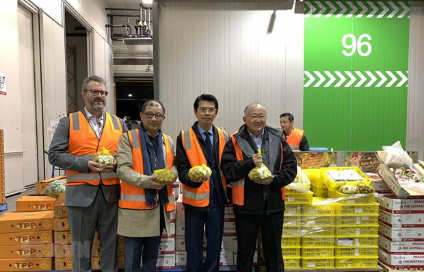 Trái cây Việt vào thị trường Australia: Cửa đã mở nhưng không dễ đi... - Ảnh 3.