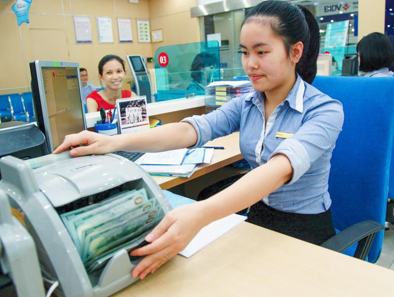 Có lo 'ngoại hóa' doanh nghiệp Việt? - Ảnh 1.