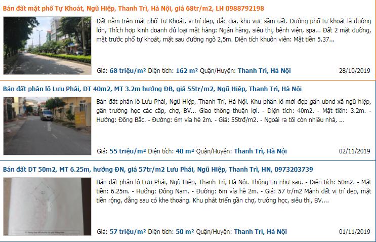 Thanh Tri