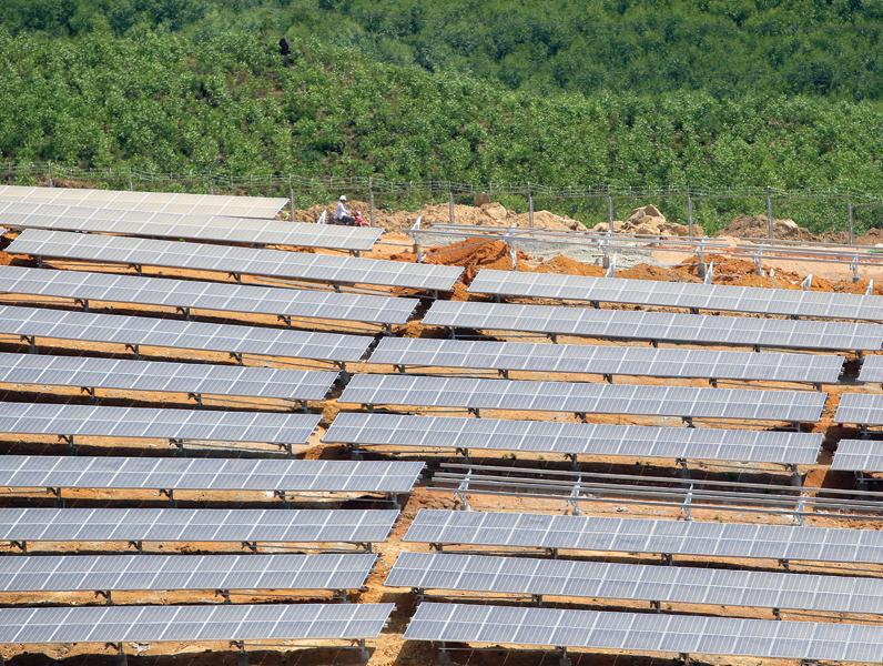Hạ nhiệt đầu tư điện mặt trời - Ảnh 1.
