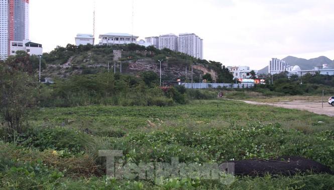 Thu hồi dự án 33 triệu USD lấn biển Nha Trang để xây công viên - Ảnh 8.