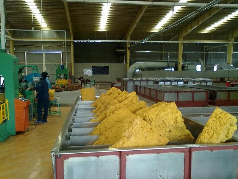 Cơ cấu sản phẩm cao su xuất khẩu chưa đáp ứng nhu cầu thị trường - Ảnh 1.