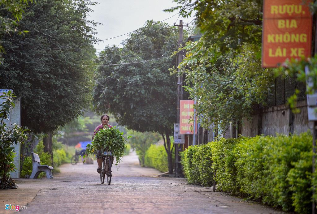 'Biệt thự rỗng' ở làng xuất khẩu lao động giàu nhất Hà Tĩnh - Ảnh 13.