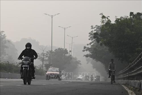 Lốp xe phế thải: Mối nguy hiểm đang rình rập môi trường - Ảnh 1.