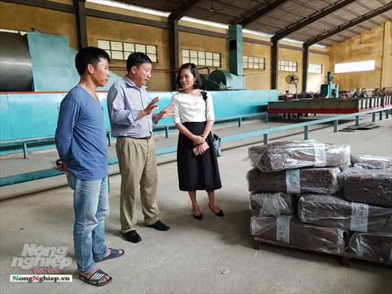 Hà Tĩnh: Xuất khẩu mủ cao su khó đi chính ngạch - Ảnh 1.