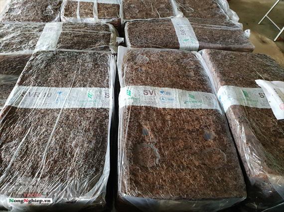 Hà Tĩnh: Xuất khẩu mủ cao su khó đi chính ngạch - Ảnh 2.