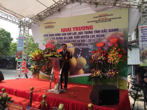 Bắc Giang đưa nông sản chất lượng cao đến với người dân Thủ đô - Ảnh 1.